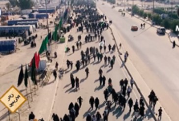البرنامج الوثائقي (زائر الأربعين)   وثائقي خاص حول زيارة الأربعين والمسير مشيا لزيارة الحسين(ع)