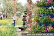 تقرير قناة المنهاج الفضائية حول افتتاح أكبر حديقة للزهور في مدينة الكوفة